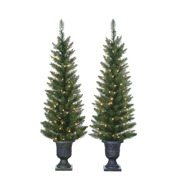 sterling inc 2 piece pre lit palm tree 4 green cedar and pine artificial christmas tree set with 100 clear white lights with plastic pot and stand - Christmas Tree Palm