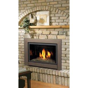 Astonishing Wood Burning Fireplace Insert Wayfair Download Free Architecture Designs Scobabritishbridgeorg