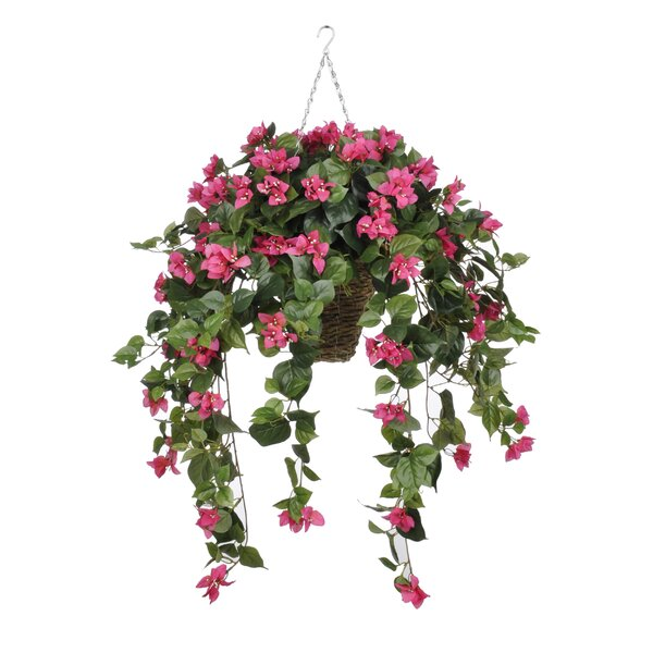 house of silk flowers artificial bougainvillea hanging plant in square basket reviews wayfair. Black Bedroom Furniture Sets. Home Design Ideas