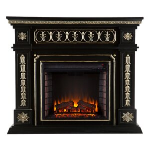 Delavan Electric Fireplace..