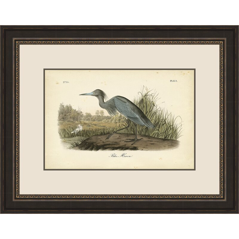 64f78c5a8bf Bay Isle Home  Blue Heron  by John Audubon Framed Watercolor ...