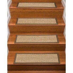 Rugs For Stair Steps Wayfair