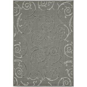 Grey Indoor Outdoor Rug | Wayfair