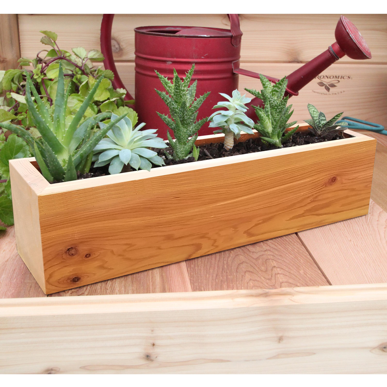 Succulent cedar planter box