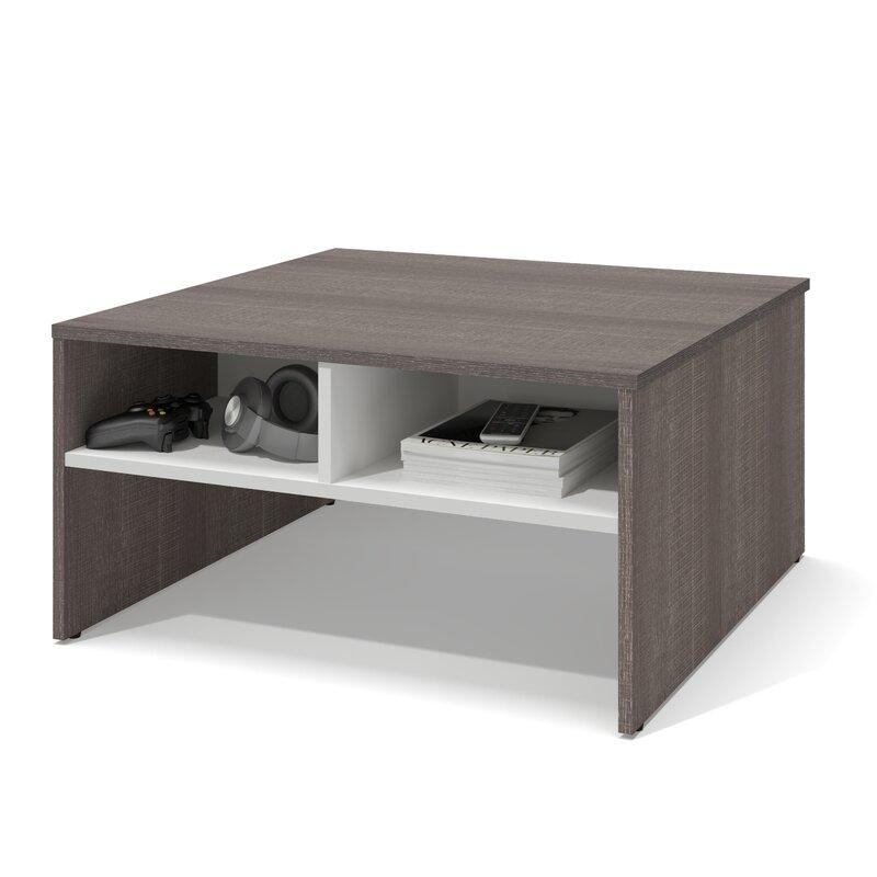 Square Coffee Table By Latitude Run: Latitude Run Frederick Storage Coffee Table With Magazine