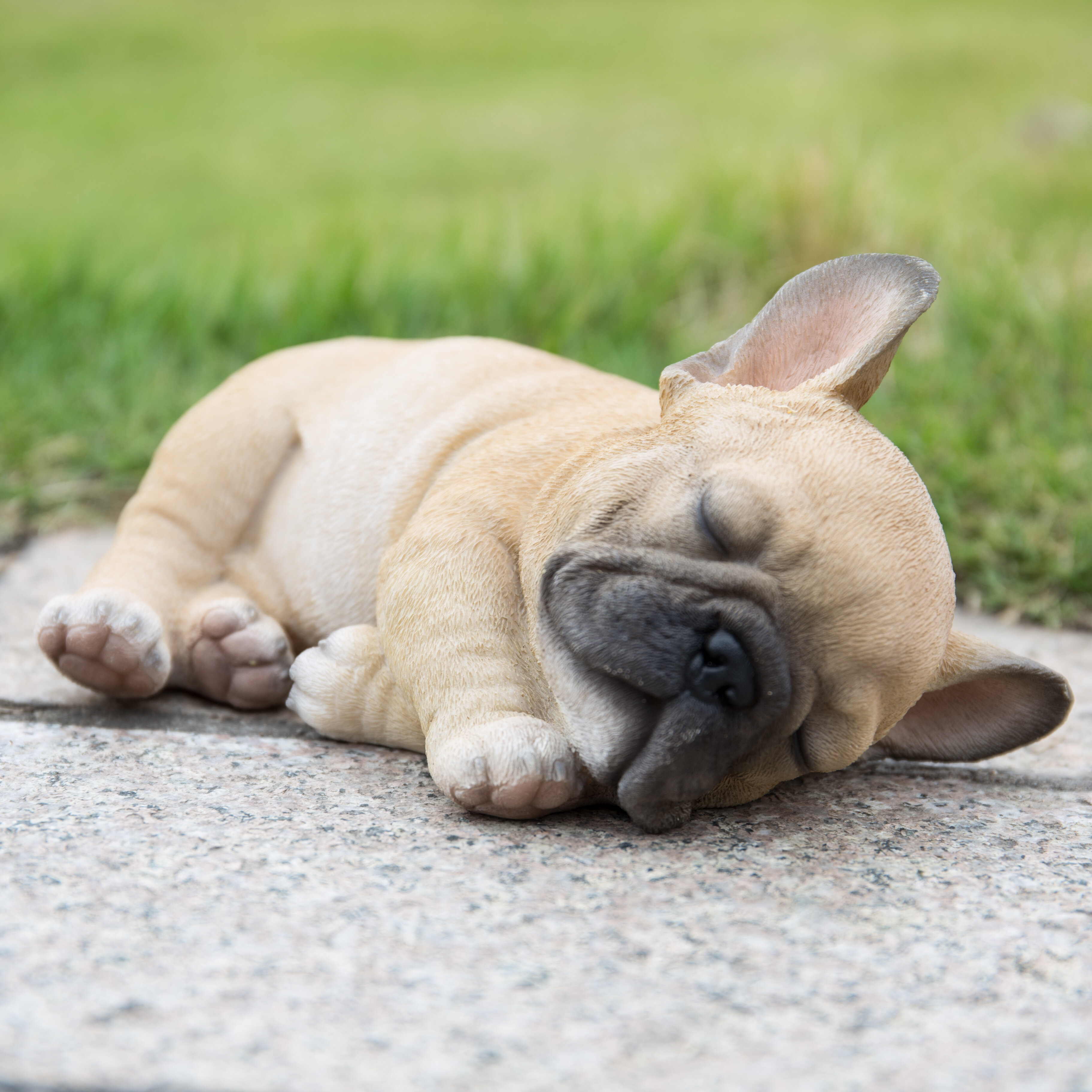 Hi Line Gift Ltd Sleeping French Bulldog Puppy Statue