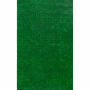 green indoor turf grass artificial new rug outdoor area fake tundra