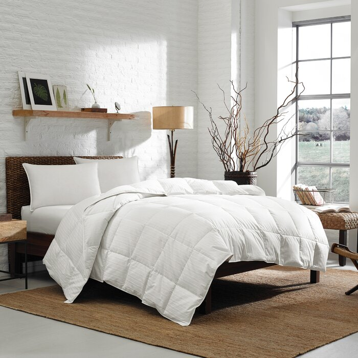 thread home down kitchen percent size com tc dp comforter queen white count amazon solid cotton