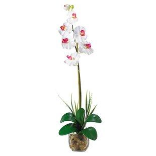 Single Silk Flowers Wayfair