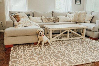 Traditional Living Room Design & Wayfair.com - Online Home Store for Furniture Decor Outdoors \u0026 More