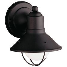Kevinson 1-Light Outdoor Barn Light