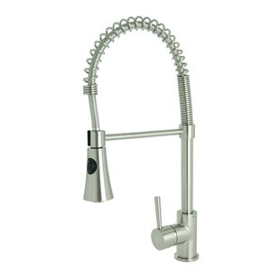 Spring Coil Kitchen Faucet Wayfair