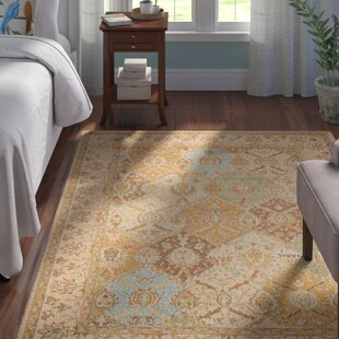 10 X 11 Area Rugs Wayfair