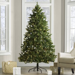 c680b4417a0 Downswept Douglas 6.5  Green Fir Artificial Christmas Tree with 650 Clear  Lights and Stand