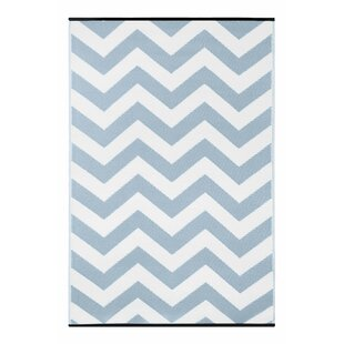 Light Blue/White Outdoor Area Rug by Longweave