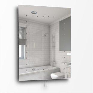 Long Slim Mirror Wayfair Co Uk