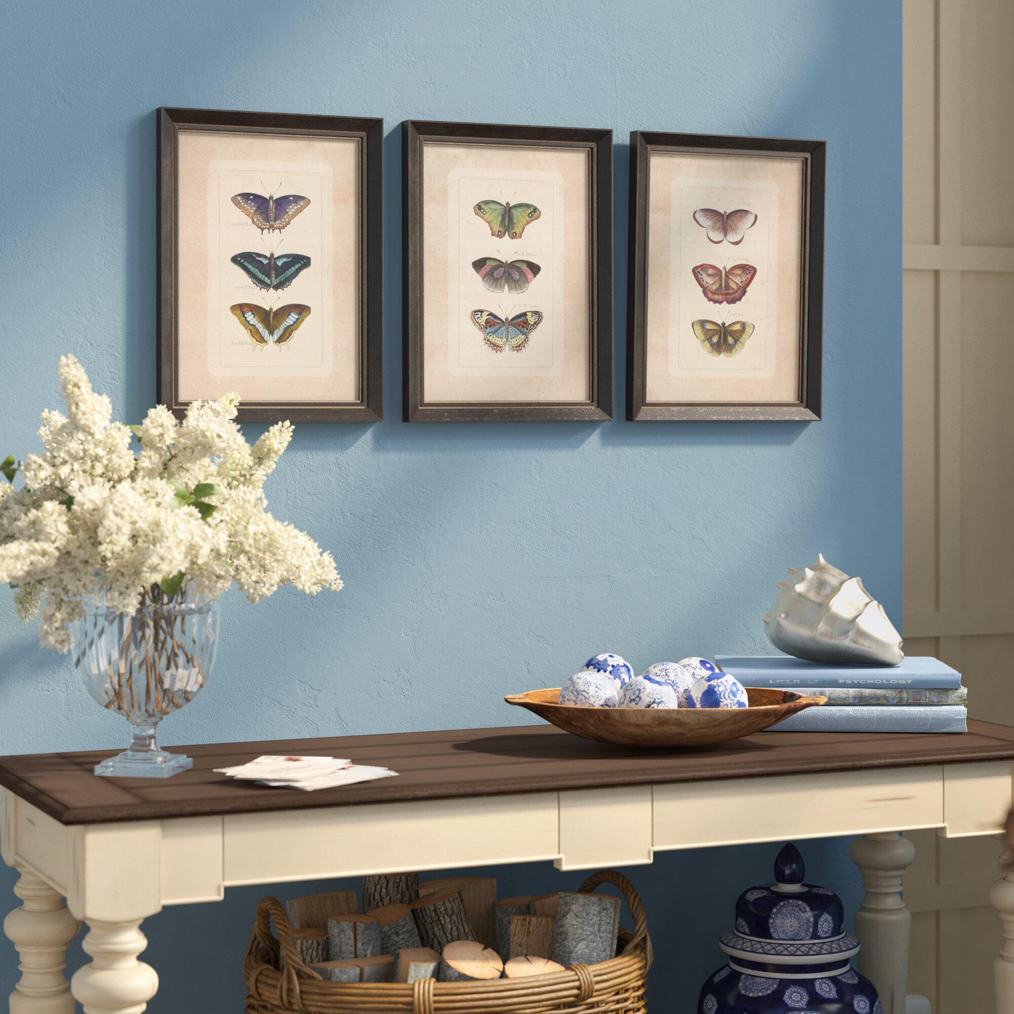 Birch Lane™ Illustrated Butterfly Framed Prints & Reviews   Birch Lane