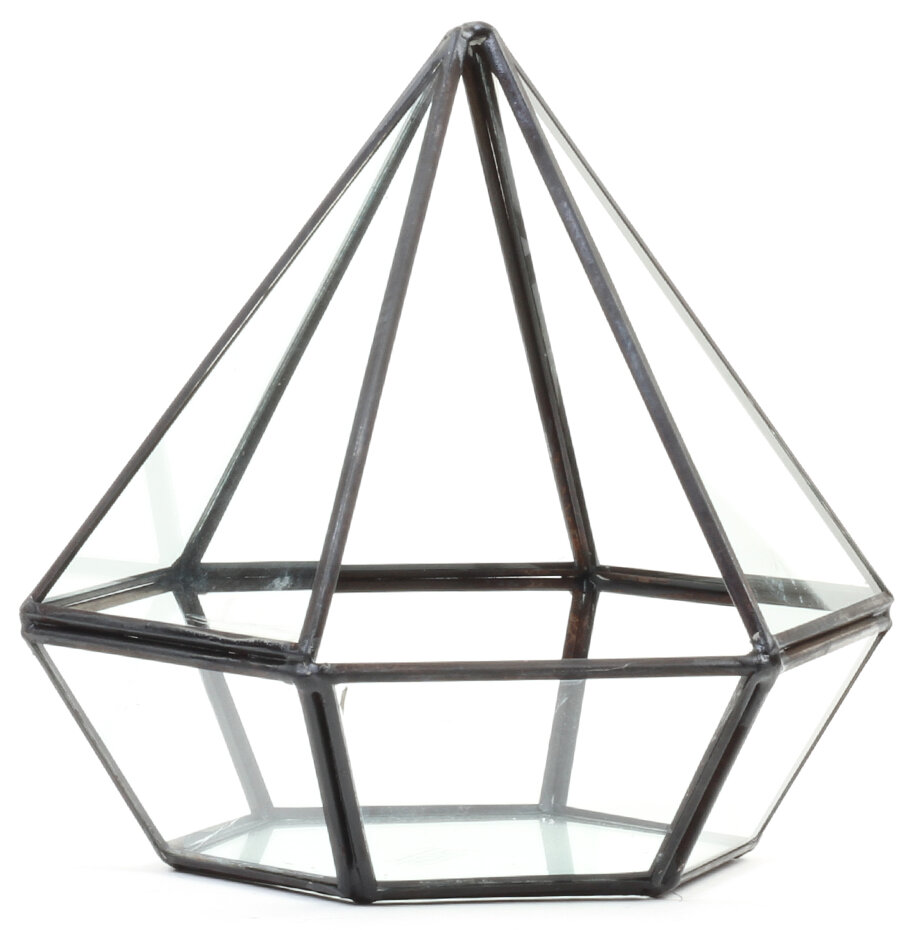 Diamond Geometric Table Glass Terrarium Reviews Joss Main