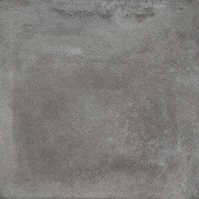 Concrete Floor Porcelain Tile Wayfair