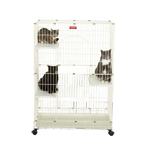 cages et enclos pour chats. Black Bedroom Furniture Sets. Home Design Ideas