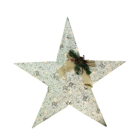 The Holiday Aisle Lighted 2 5 D Country Rustic Birch Star Christmas Decoration Clear Lawn Art Wayfair