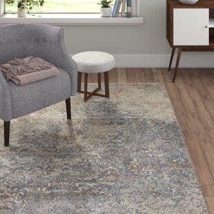 Teppiche in Beige: Stil - Glamourös zum Verlieben | Wayfair.de