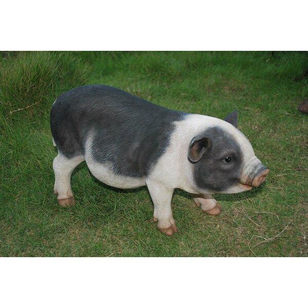 Hi Line Gift Ltd Pot Belly Pig Figurine Amp Reviews