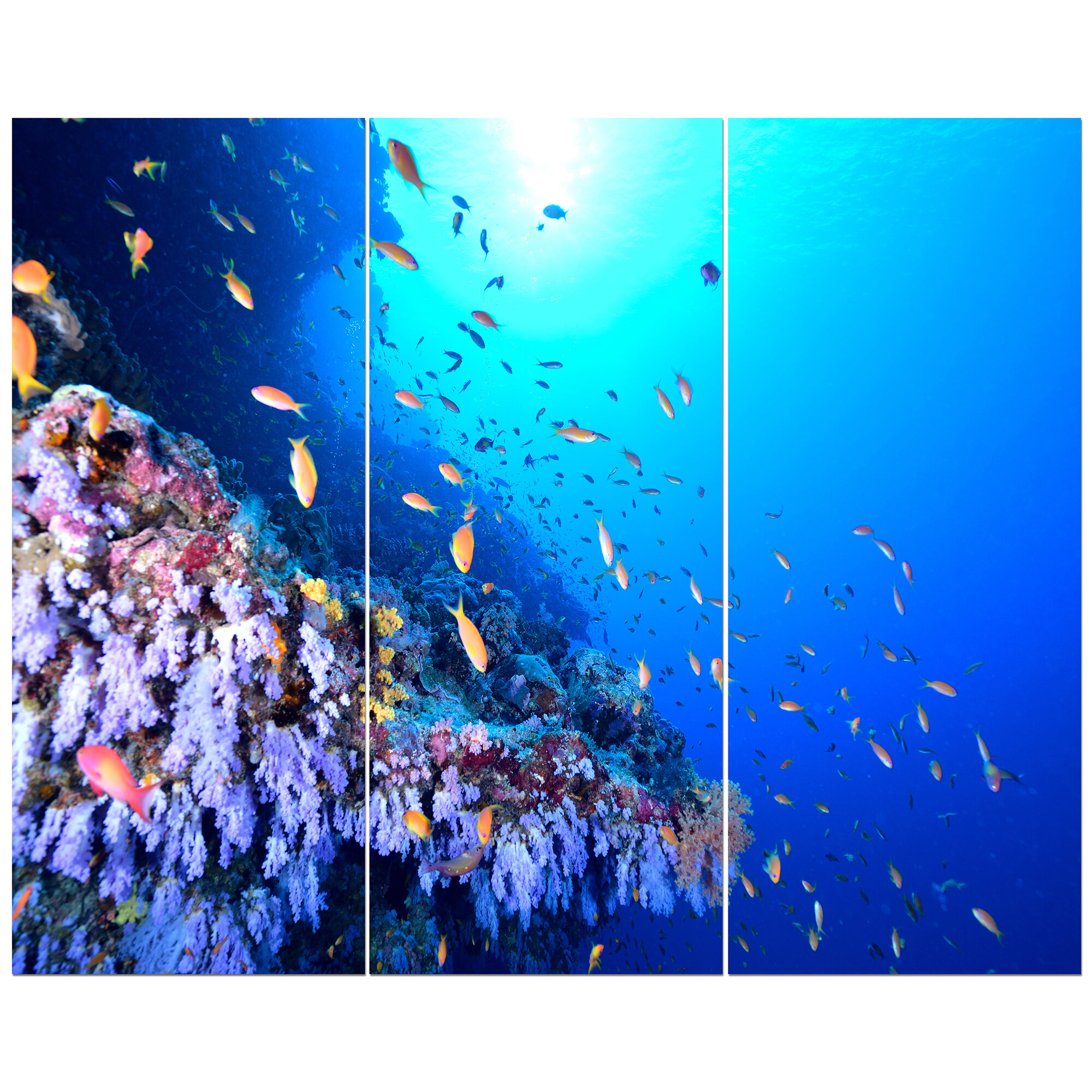 1f4ce484ee54 'Coral Reef with Different Fish Swimming' Photographic Print Multi-Piece  Image on Wrapped Canvas