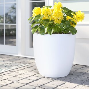 White Planter Pots Youll Love Wayfair