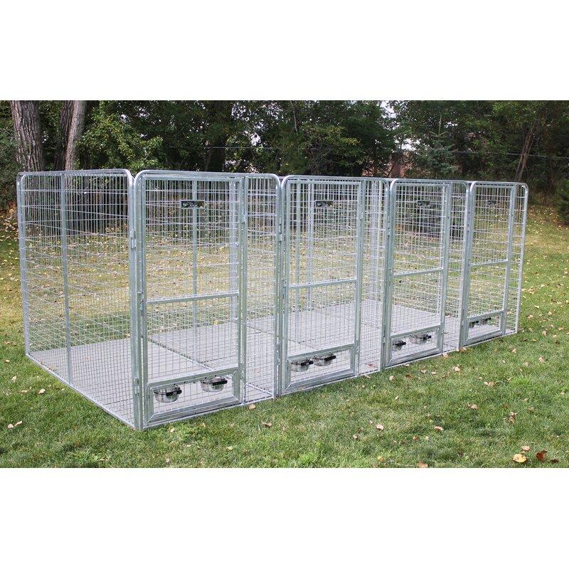 tucker murphy pet avery 5 dog galvanized steel yard kennel wayfair