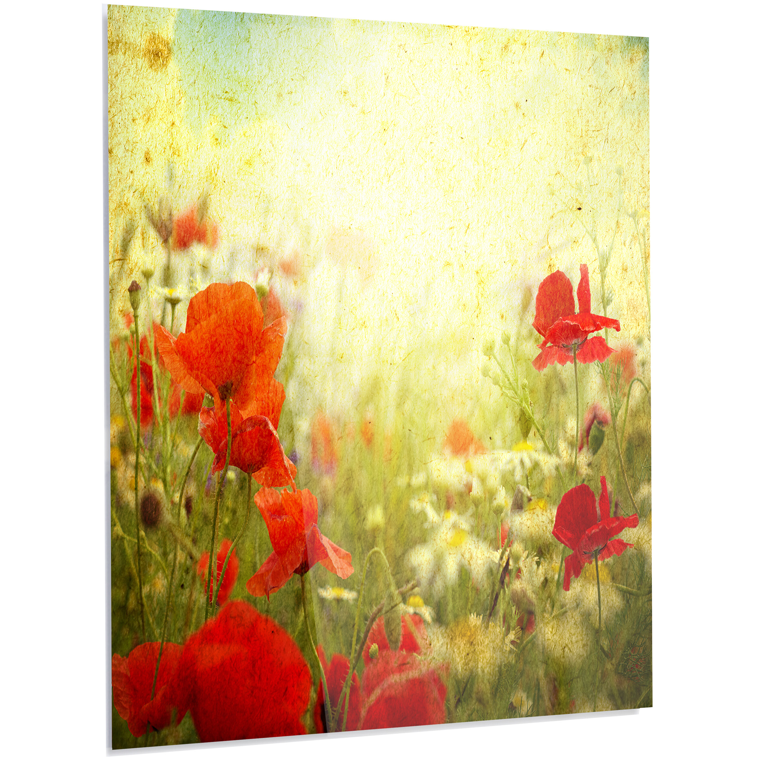DesignArt \'Grunge Background with Red Poppies\' Graphic Art on Metal ...