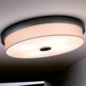 Raphael 4-Light Flush Mount