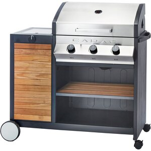 Meridan 3-Burner Propane Gas Grill with Side Burner