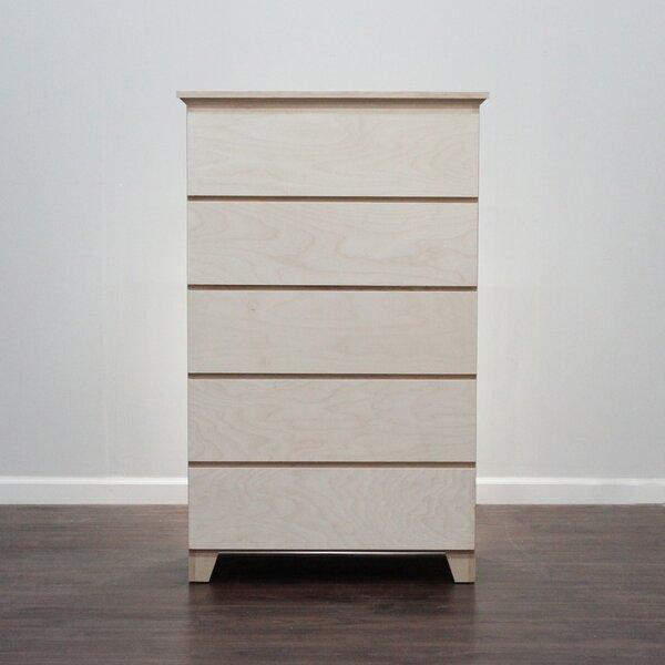 Gothic Furniture Flat Shaker 5 Drawer Chest Reviews Wayfair
