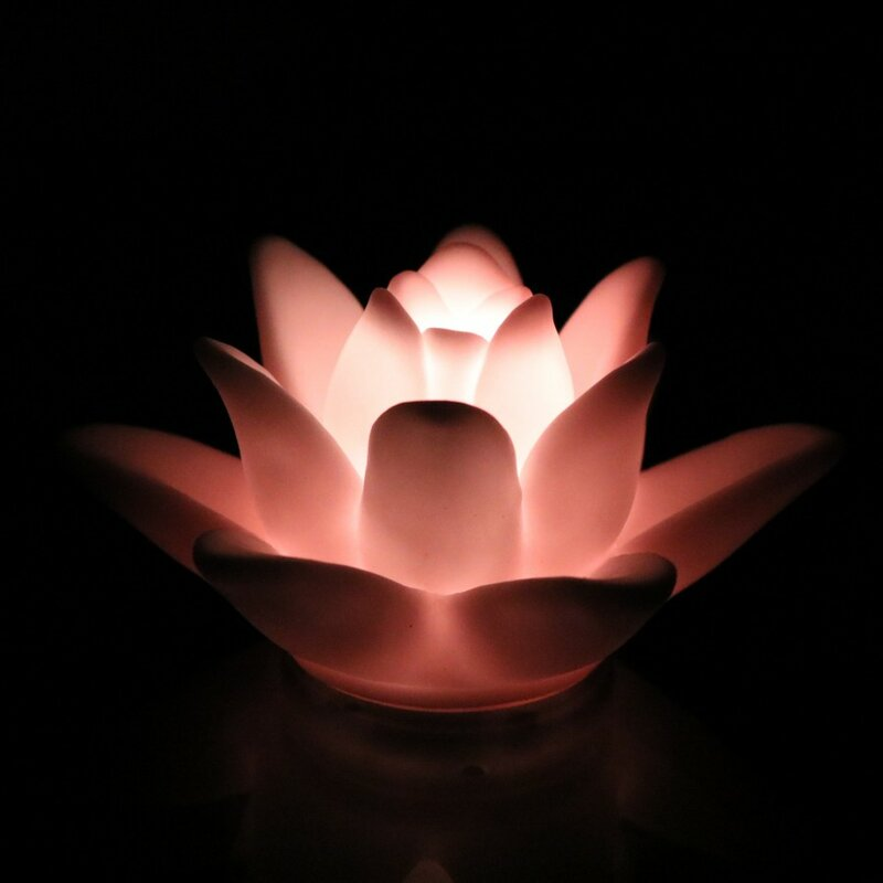 Gradual Lotus LED 5.5cm Mood Light L& & Hazelwood Home Gradual Lotus LED 5.5cm Mood Light Lamp | Wayfair.co.uk