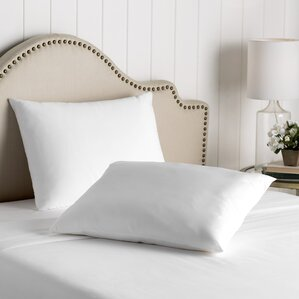 Wayfair Basics Waterproof Allergy and Bed Bug Pillow Protector (Set of 2) by Wayfair Basics?