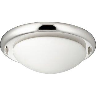 Globe ceiling fan light kits youll love wayfair dome 2 light globe ceiling fan light kit aloadofball Choice Image