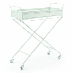 Sarver Mint Bar Cart by Latitude Run