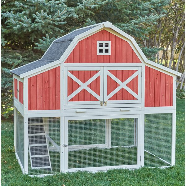ChickenSaloon Barn Chicken Coop With Roosting Bar