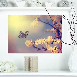 Vintage Butterfly And Cherry Tree Graphic Art On Wrapped Canvas