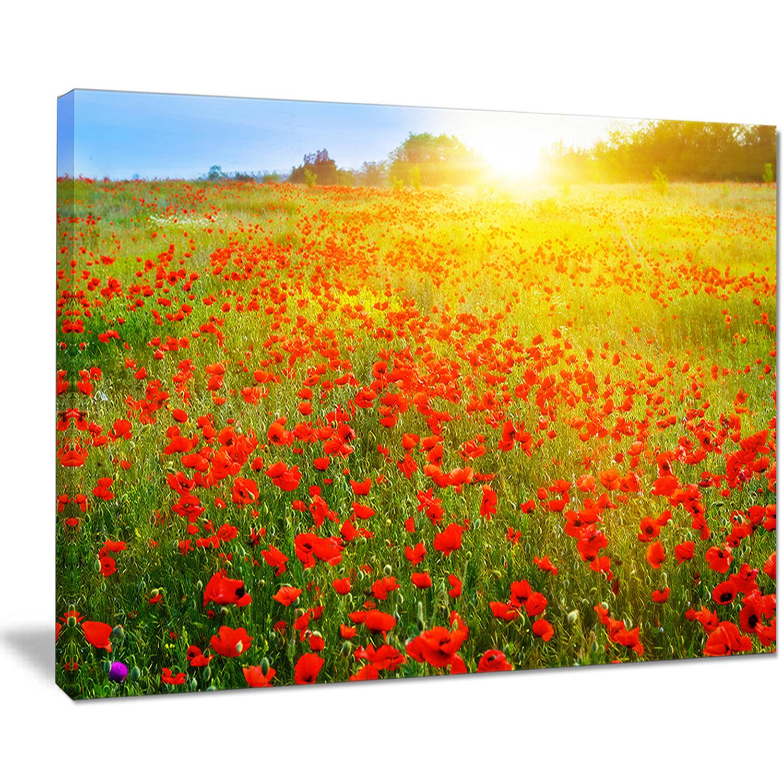 DesignArt \'Beautiful Sunshine Over Poppy Fields\' Photographic Print ...