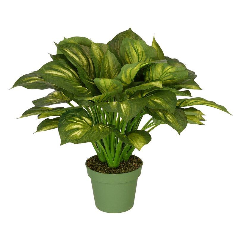 House Of Silk Flowers Hosta Floor Plant In Pot Reviews Wayfair