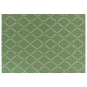 Flat Weave Light Green Area Rug