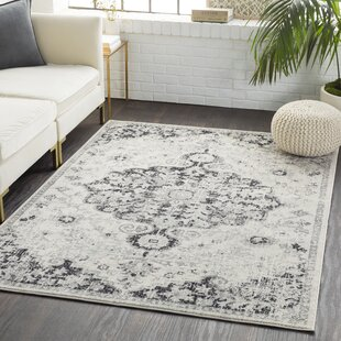 Gray Silver Rugs Joss Main