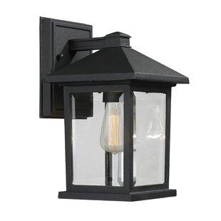 Leroy 1 Light Outdoor Wall Lantern
