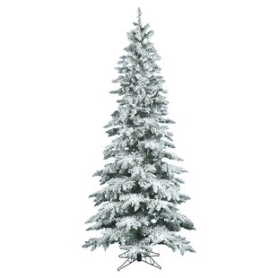 flocked utica 65 whitegreen fir trees artificial christmas tree with stand - White Flocked Christmas Trees