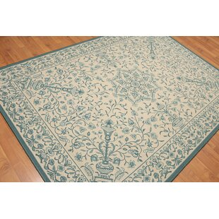 5 7 X7 10 Beige Aqua Colour Machine Made Area Rug Wool Transitional Oriental