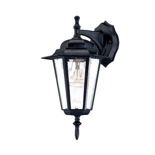 Motion sensor outdoor wall lighting youll love wayfair stovall contemporary 1 light outdoor wall lantern workwithnaturefo