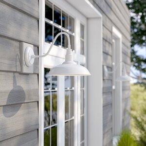 Belleair Bluffs 1-Light Outdoor Barn Light