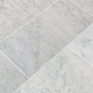Genial Find The Perfect 12 X 24 Marble Tile | Wayfair